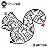 Difficult maze of the squirrel
