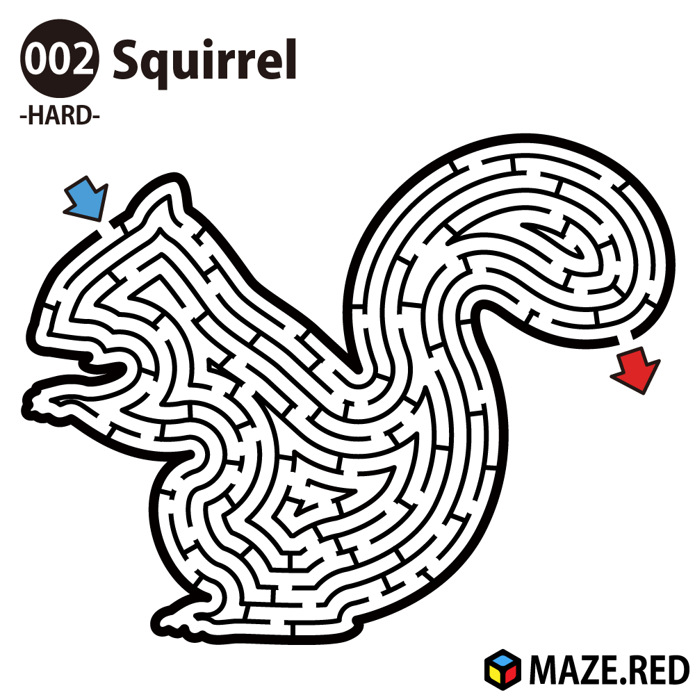 Difficult maze of the squirre