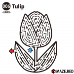 Difficult maze of the tulip